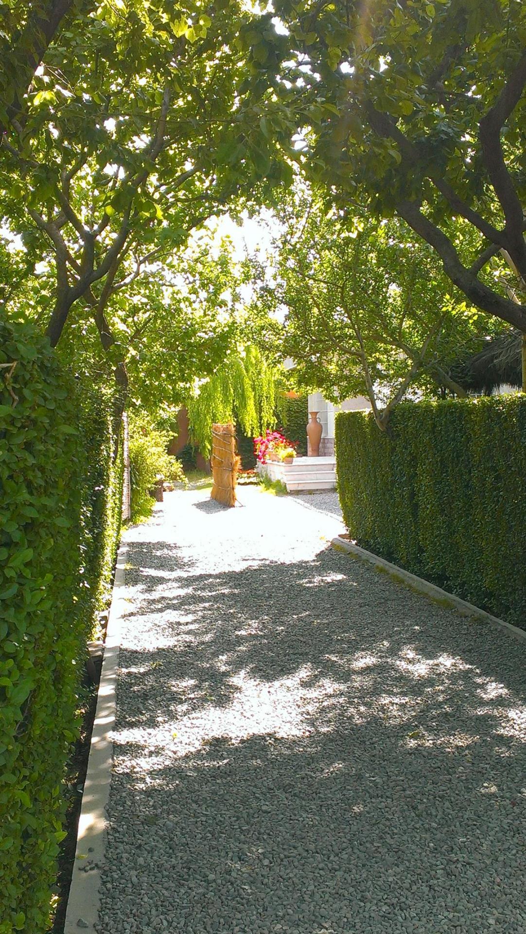 گالری عکس باغ عروس آریو