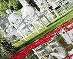 خدمات مجالس و تشریفات عروسی آریو