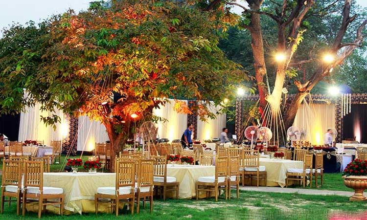دیزاین و طراحی میز و صندلی باغ عروسی